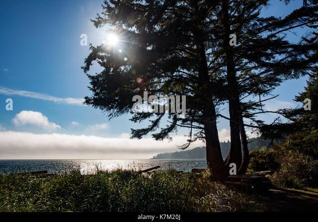 French Beach Provincial Park - Sooke, near Victoria, Vancouver Island, British Columbia, Canada - Stock Image