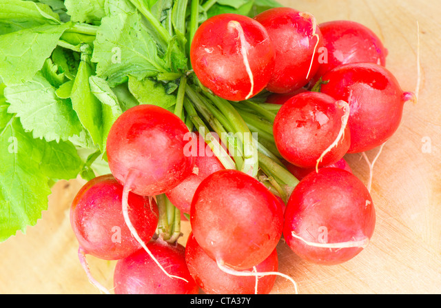 Fresh carrots with green tops - Stock Image