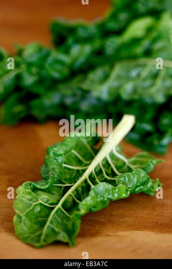 Close-up view of lettuce leaf - Stock Image