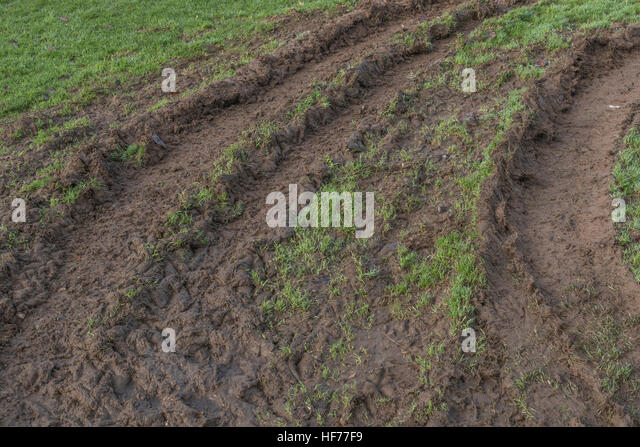 Deep ridges in mud made by tractor tyres / tires. - Stock Image
