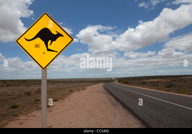 Iconic yellow and black kangaroo road sign on an outback road in Western Australia - Stock-Bilder