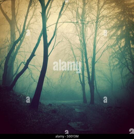 Dark fairytale - Stock Image