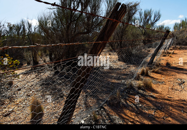 how to build a rabbit proof fence