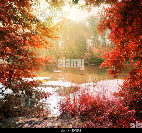 Sunbeams over calm river in the autumn - Stock Image