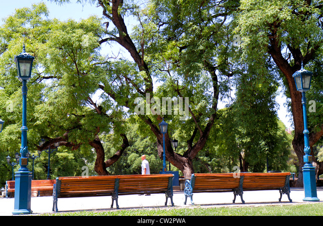Argentina Mendoza Plaza Independencia public park bench lamp trees trunk branches leaves vegetation green space - Stock Image