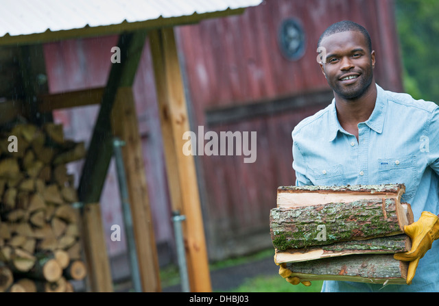 A young man carrying a pile of logs in from the logstore. Farm life. - Stock Image