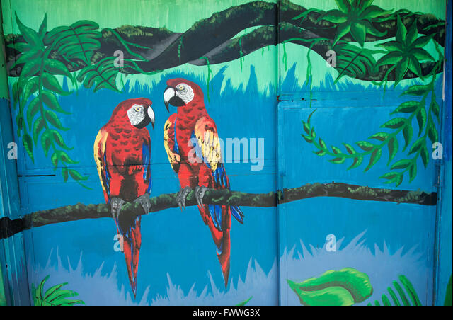 Graffiti of two Scarlet Macaws, San Jose downtown, San José Province, Costa Rica - Stock Image