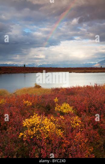 Denali Highway, Alaska. - Stock-Bilder