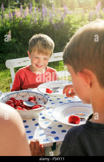 Sweden, Halsingland, Jarvso, Brothers (4-5, 6-7) eating strawberries in garden - Stock Image