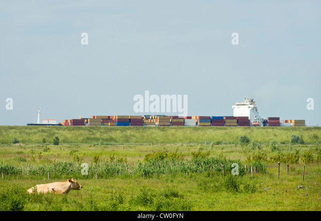Containers in shipyard by rural field - Stock Image
