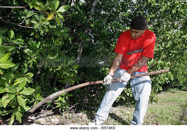 Miami Beach Florida Tatum Waterway cleanup clean-up clean up Teen Job Corps ECOMB volunteer volunteers student Hispanic - Stock Image