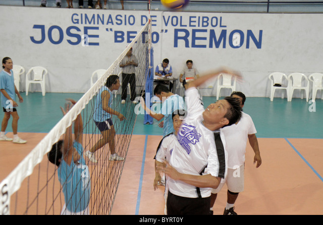 Panama City Panama Calidonia volleyball gymnasium sport athletics fitness court net Hispanic man jumping practice - Stock Image