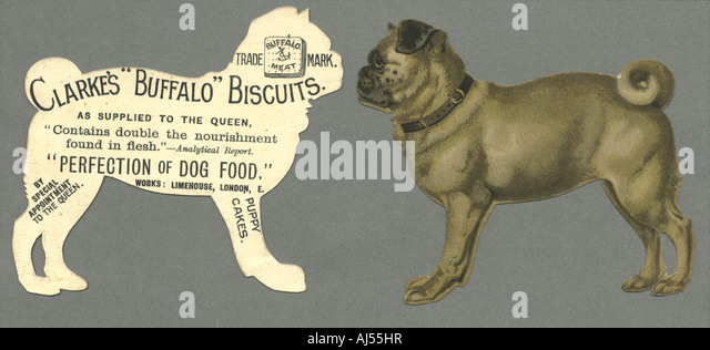 Chromolithographed advertisement for dog biscuits - Stock Image