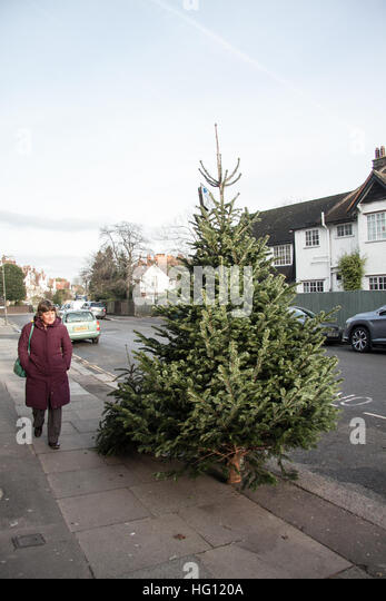 Temporary recycling centres have been set up across Bromley borough for Christmas trees. These sites also accept green garden waste, but all trees must not have decorations, soil or pots.