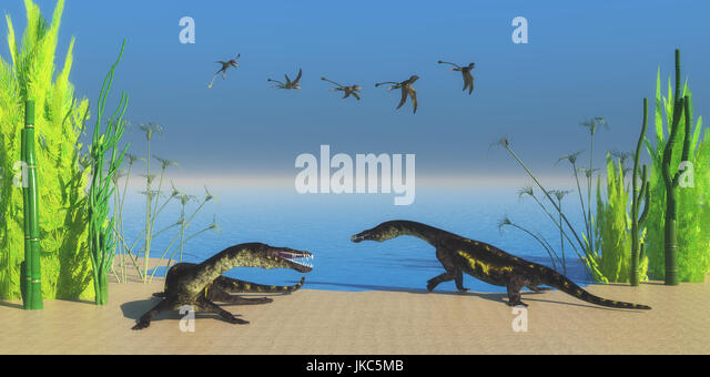 A flock of Peteinosaurus flying reptiles watch as two Nothosaurus dinosaurs growl at each other on a Triassic beach. - Stock Image