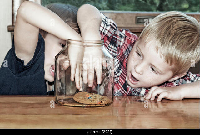 Two boys compete and reach for last cookie - Stock Image