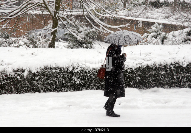 Man with umbrella walking in heavy snow in Watford Hertfordshire England - Stock Image