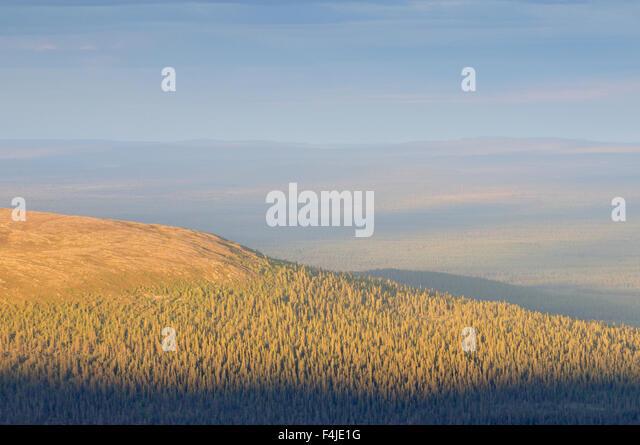 color image Dalarna forest forest landscape horizontal landscape nature Scandinavia Sweden view - Stock-Bilder