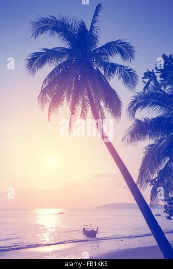 Vintage toned tropical beach at sunset. - Stock-Bilder