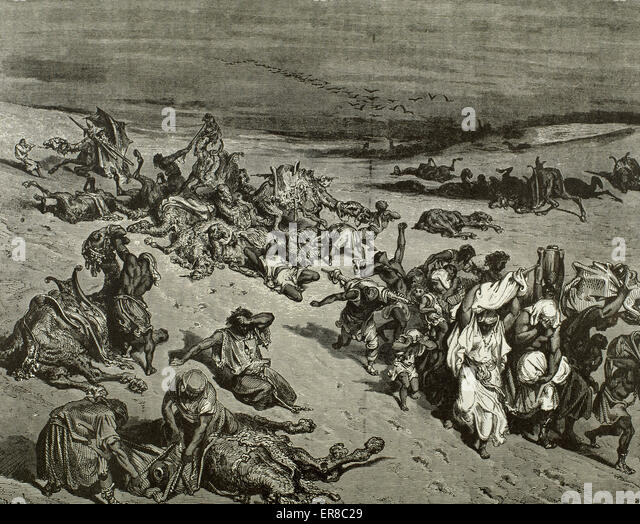 The Murrain of Beast. The Fifth Plague: Livestock Disease. Exod 9. Engraving by Gustave Dore. 19th C. - Stock Image