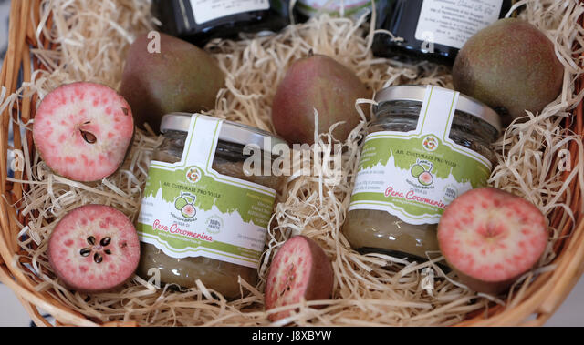 Mush tun of Cocomerina pear typical from Emilia Romagna,Italy,Europe. - Stock Image