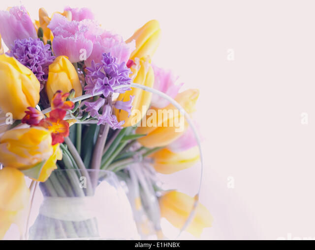 Greeting Card. Bouquet of Colorful Mixed Flowers - Tulips in a Vase. Floristics - Stock Image