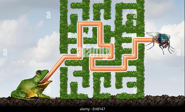 Adapting to challenges being flexible concept as a green frog with a tongue solving a maze made of plants to catch - Stock-Bilder