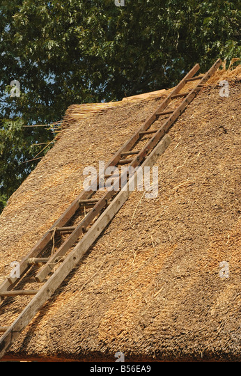 Jamestown Settlement thatch roof with ladder inside Fort James action virginia historic recreation - Stock Image