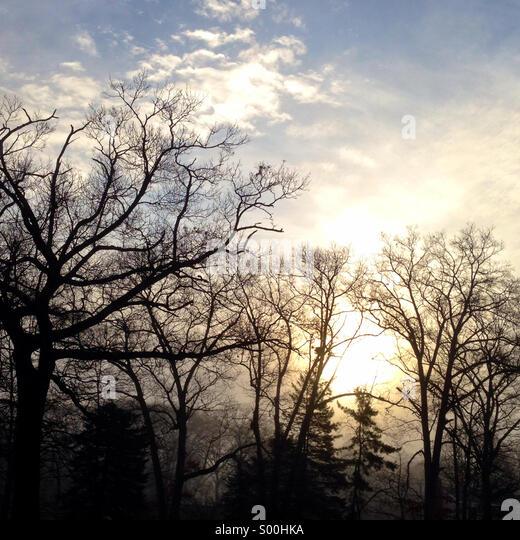 Morning sun burning off fog. - Stock Image