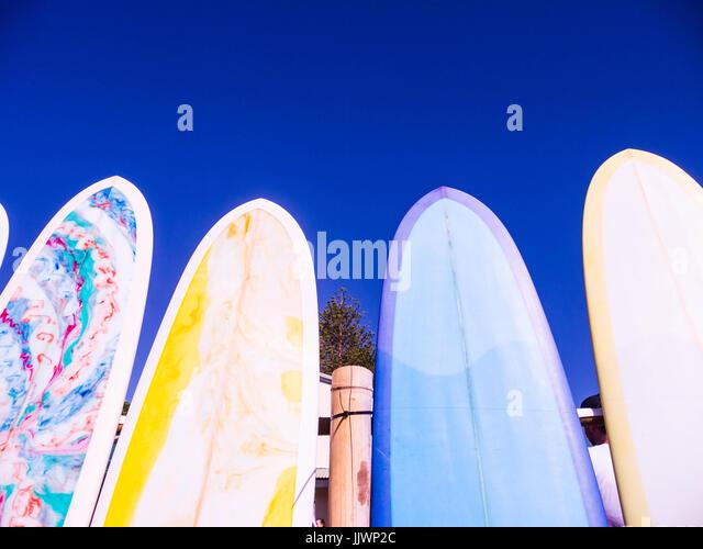Bear Surfboards Byron Bay