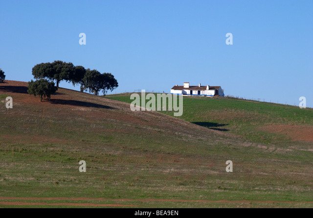 fields and farm house alentejo portugal - Stock Image