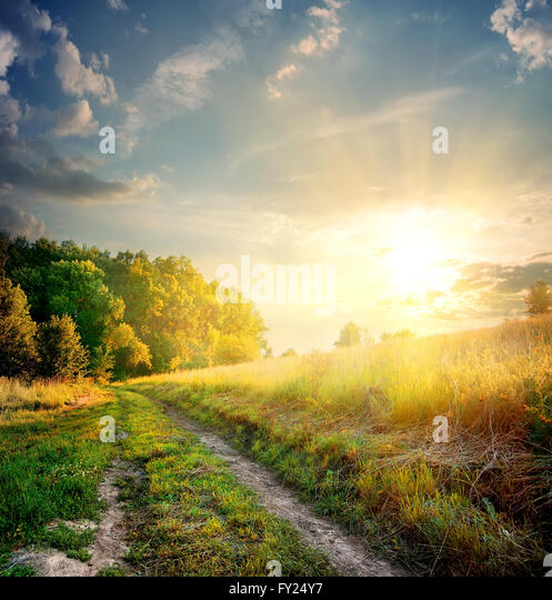 Sunbeams and country road in the autumn - Stock Image