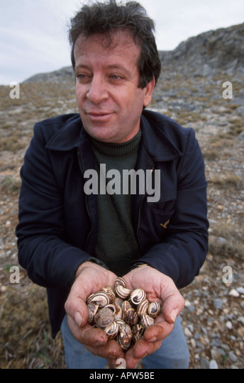 Greece Europe Isle of Rhodes Lindos man collects snails food - Stock Image