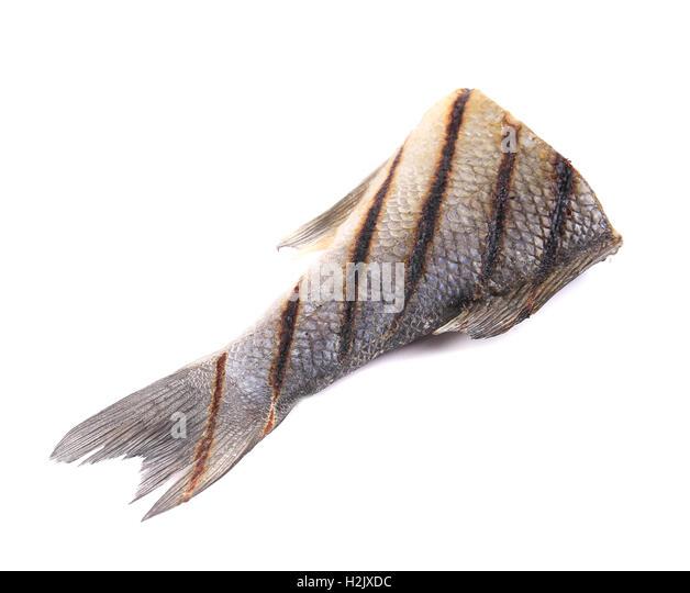 Fish tail. - Stock Image