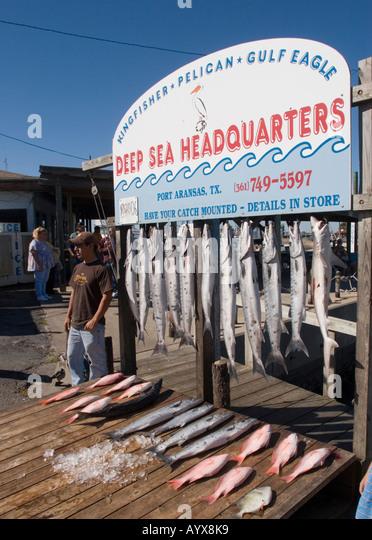 Deep sea vessel stock photos deep sea vessel stock for Corpus christi deep sea fishing