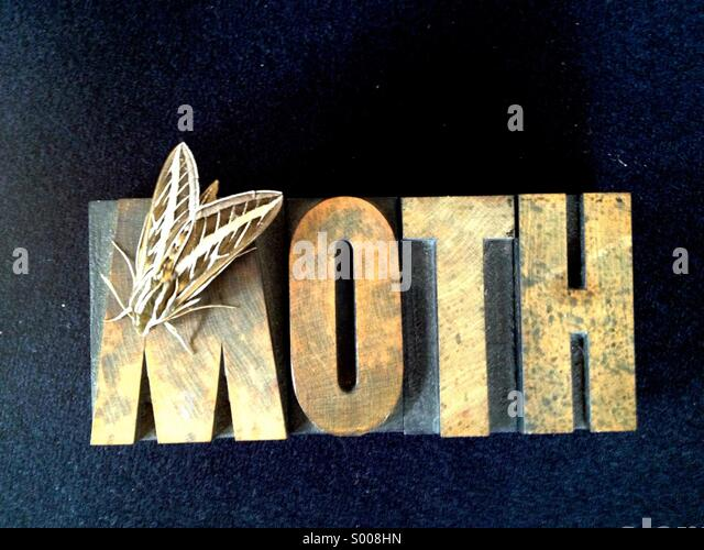 Live moth on word - Stock Image