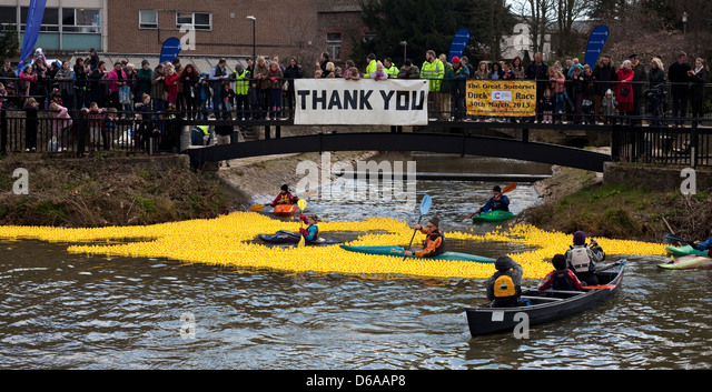 spectators line the route to watch thousands of plastic ducks in a race on the river Tone for charity with help - Stock Image