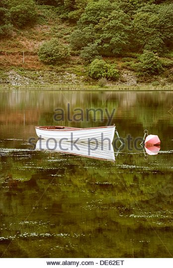 White wooden rowing boat moored in lake - Stock Image
