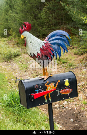 Folk art rooster on mail box - Stock Image