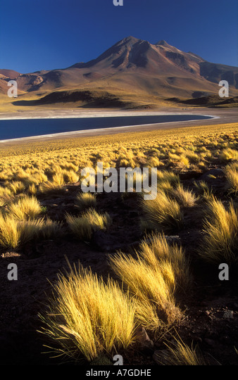Laguna Miscanti Cerro Miniques The Andes North Chile - Stock Image