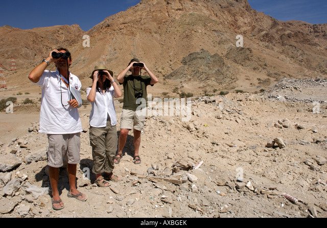 Birdwatchers in Oman. - Stock Image