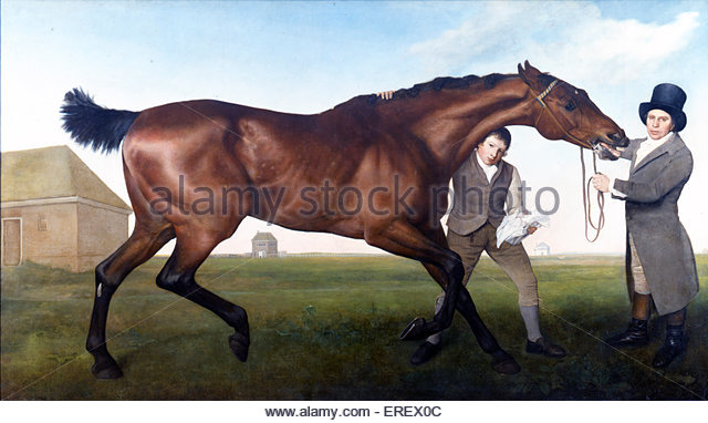 Hambletonian by George Stubbs, c. 1800. Shows thoroughbred champion racehorse that belonged to Sir Charles Turner. - Stock Image