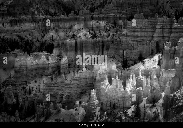 Hoodoos in Bryce National Park, Utah - Stock Image
