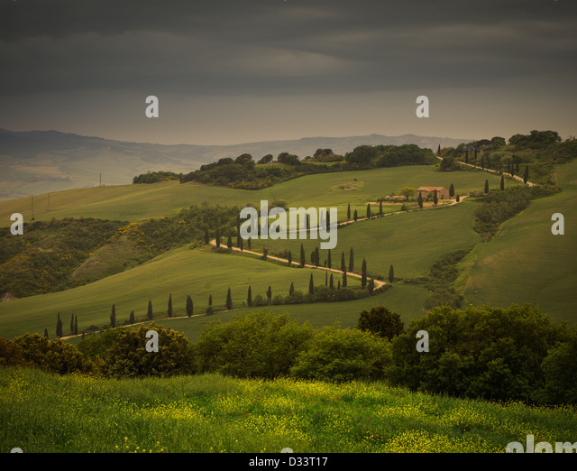 an ordinary tuscany road - Stock Image