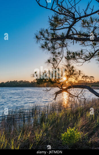 Sunset over a fresh water coastal dunes lake in the panhandle of Florida, a few miles east of Destin. - Stock Image