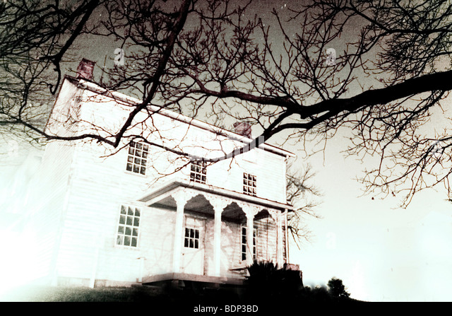A white house with tree branches - Stock Image