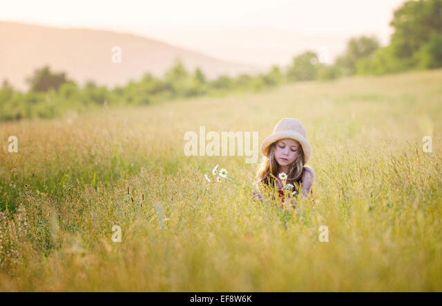 Girl (6-7) picking flowers in meadow - Stock Image