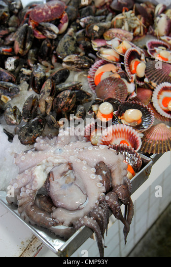 Lima Peru Surquillo Mercado de Surquillo market stall business shopping vendor fresh fish seafood octopus tentacles - Stock Image