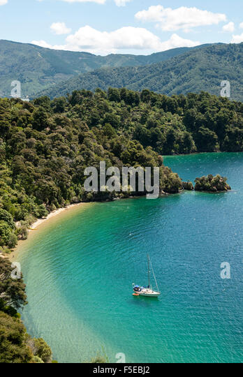 Okiwa Bay, Marlborough Sounds, South Island, New Zealand, Pacific - Stock Image