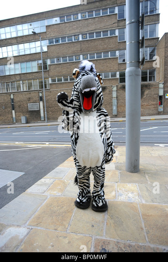 Someone dressed in a zebra costume outside the new Nottingham contemporary arts centre - Stock Image